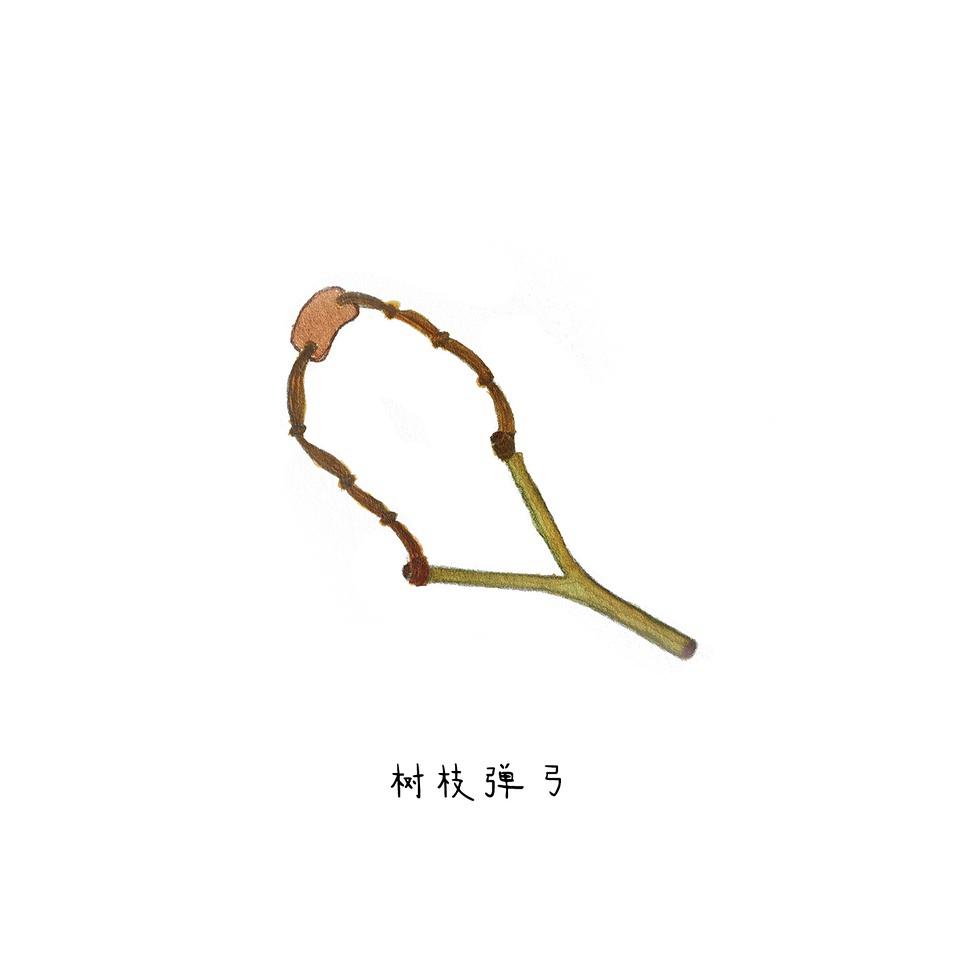 会爬树的小孩子爬到枫杨低矮处的树杈上,挑一枝漂亮结实的y形树枝折下