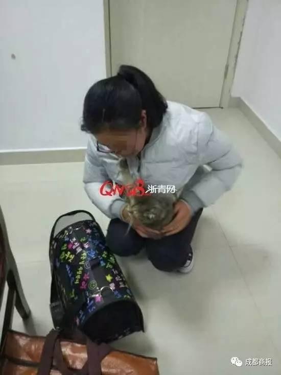 【晕】小哥哥偷偷带乌龟上飞机,藏在你想不到的地方,安检员差点被笑死