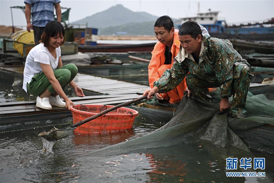 鄱阳湖渔民上岸记 - 谭笑古今 - 谭笑古今