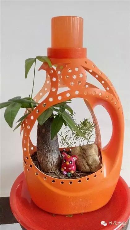 看完这些塑料瓶做的花盆,我开始后悔,为啥以前丢了那么多塑料瓶