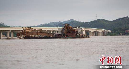 图为遇险挖沙船正被拖离桥底转移至安全地带。 陈选平 摄