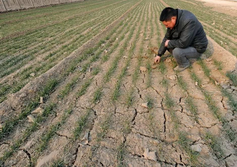 内蒙古水患形成10盟市66个旗县区434万人遭灾