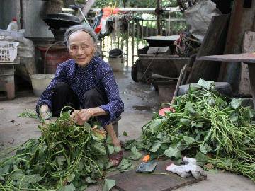 美国医生访中国巴马村寻长寿秘诀:多笑多动从容面对变老