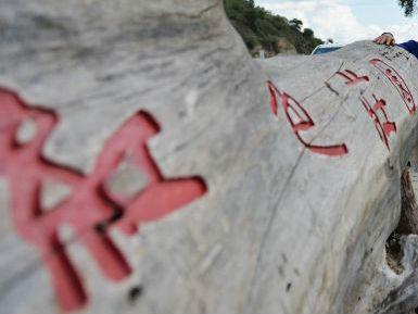 美媒:《习仲勋在南梁》美术展上受关注 好评不断