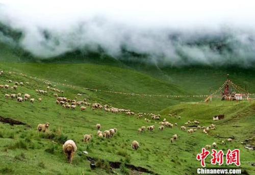 资料图:夏日的祁连山。郎文瑞摄