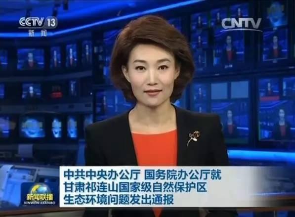 3名副部因中办、国办通报上了新闻联播