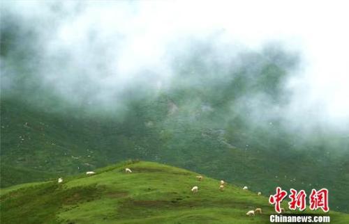 资料图:七月的祁连山云雾缭绕。 郎文瑞摄