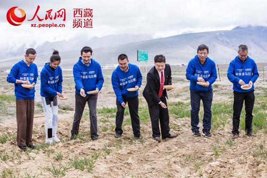 自然堂在西藏种66万平方米公益草场