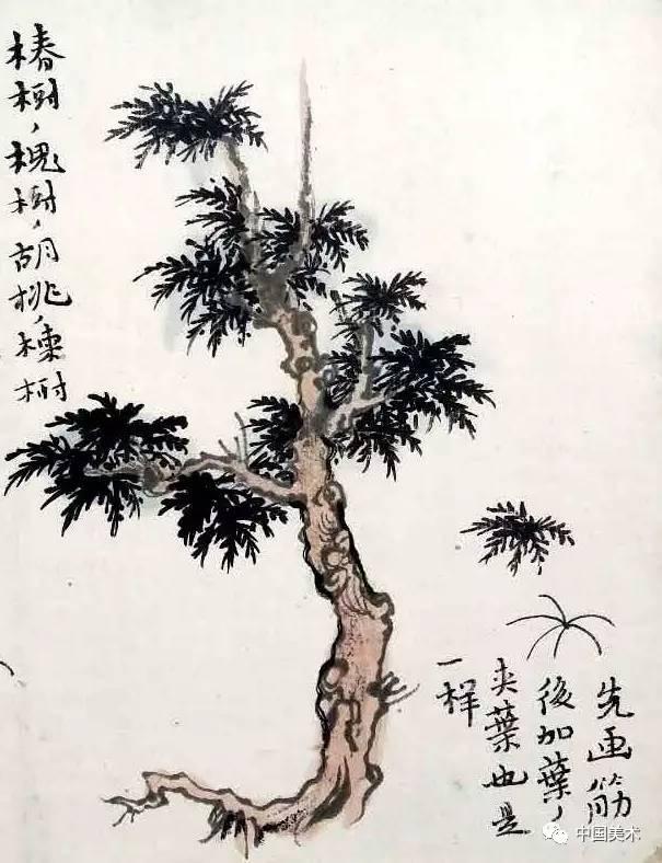 椿树,槐树,胡桃等树画法. 先画筋后加叶,夹叶也是一样. 柳树画法