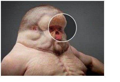 科学家模拟100年后人类进化的模样,容貌遭到众多网友唏嘘