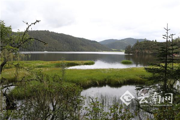 【聚焦迪庆全域旅游】普达措国家公园,连空气都是甜的