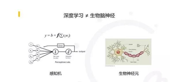 李开复:人类的演化史就是一部生物智能的训练史