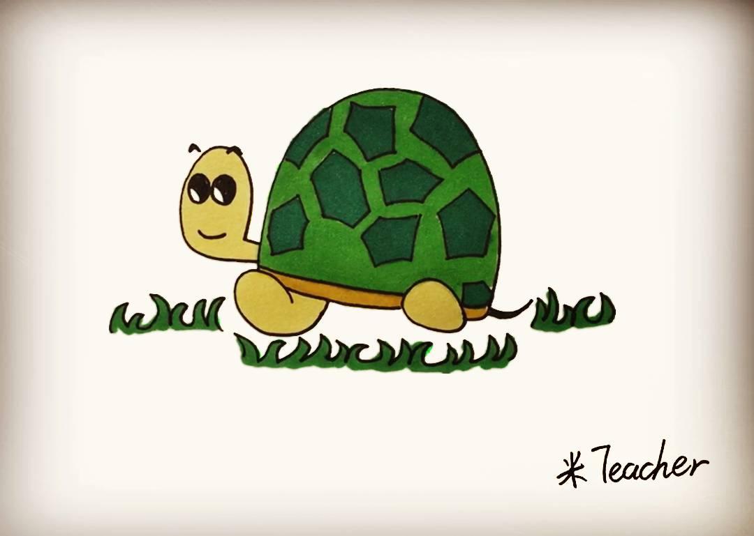 第九步 最后我们把可爱的小乌龟涂上漂亮的颜色吧.