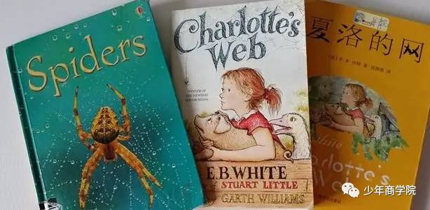 快速阅读弊大于利,5位妈妈用思维导图训练孩子深度阅读