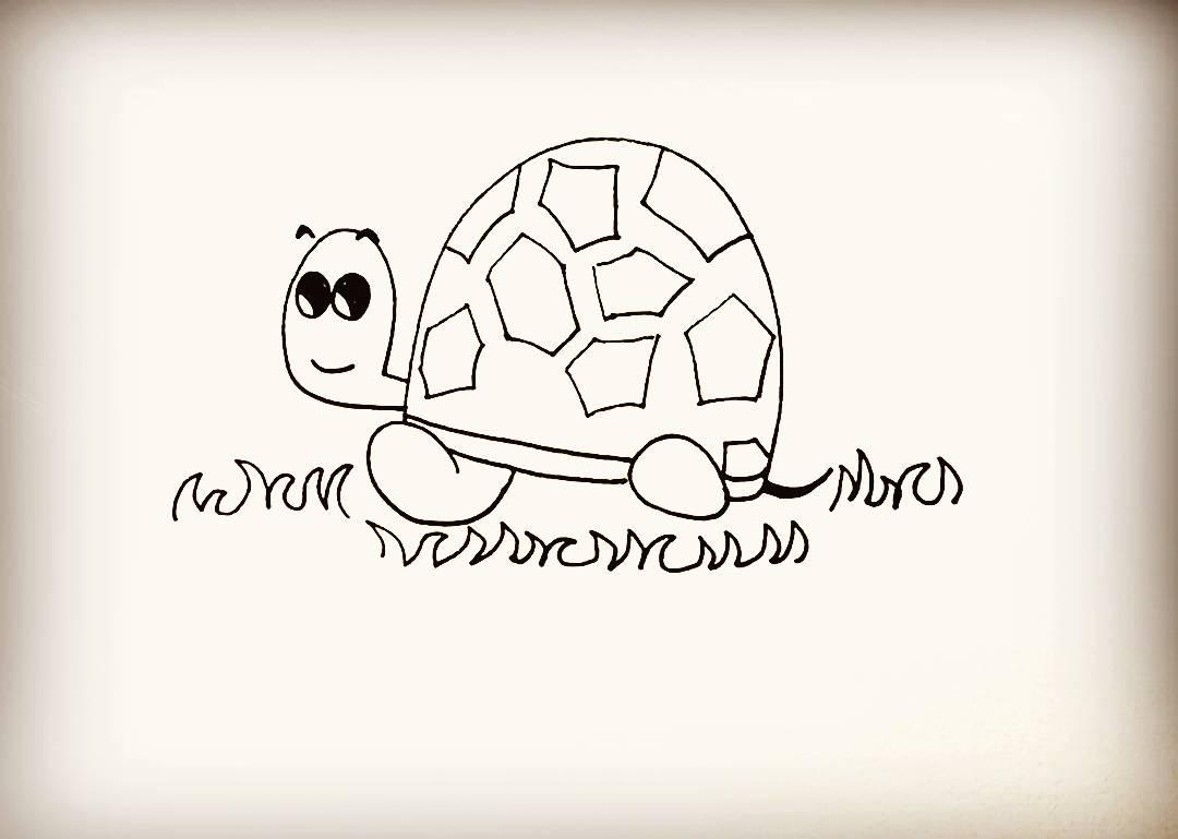 简笔画-小乌龟