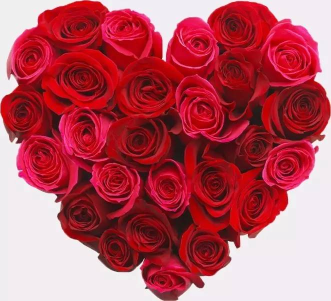 七夕将近,接到玫瑰花订单的老板可要注意了