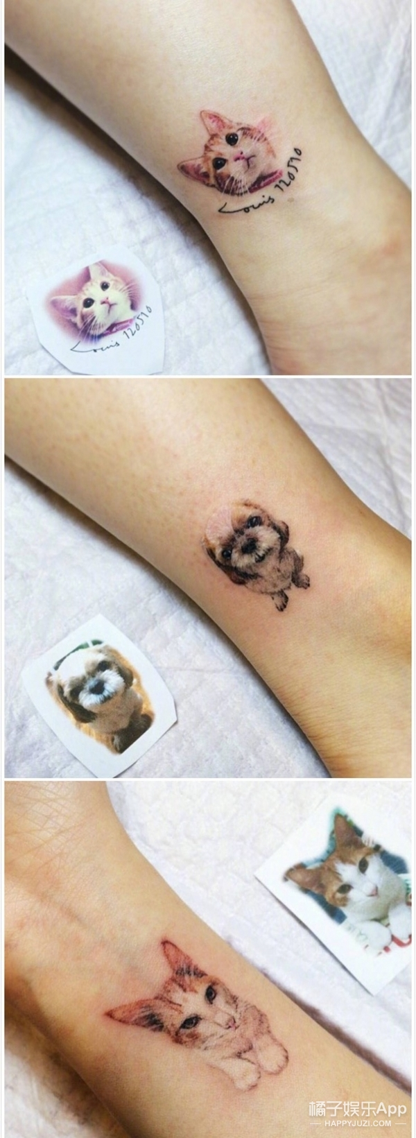 这些萌萌的小动物纹身,是仙女们的最佳选择!