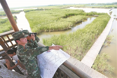 老兵手绘地图 助力湿地保护