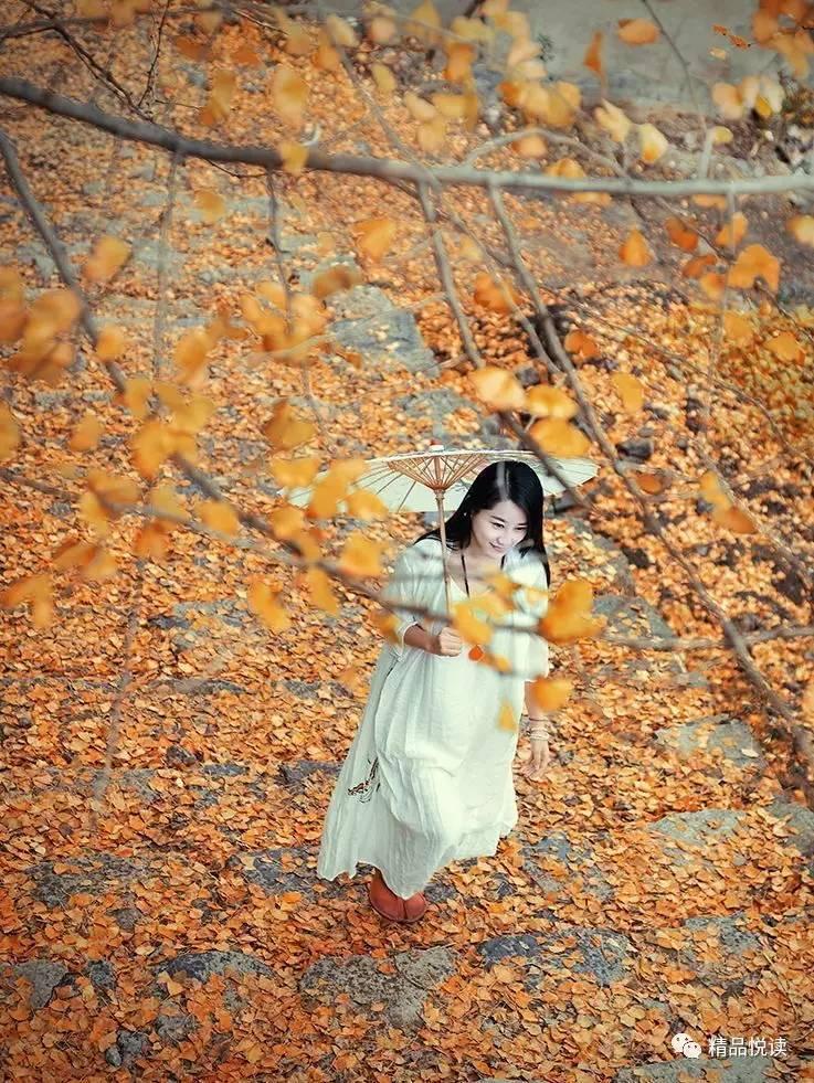 【异地同题】《精品》《问情》出题人/风之笑表情致恋落叶包图片