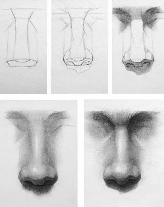怎样画鼻子素描步骤图