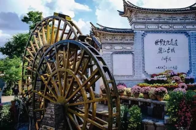 旅行|为什么那么多人想去丽江?
