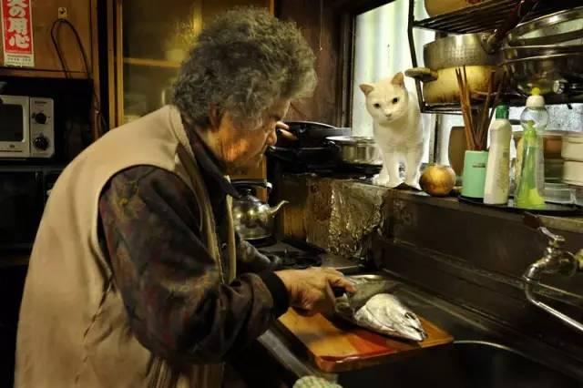 日本老奶奶做爱_日本老奶奶收养了一只耳聋小猫,结局令无数人落泪!