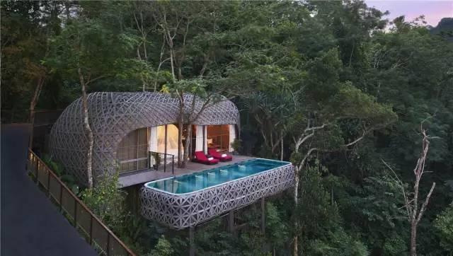 睡到媲美全球的森林小木屋