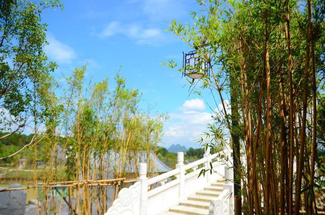 你站在桥上看风景, 看风景人在楼上看你!诗意贺州!