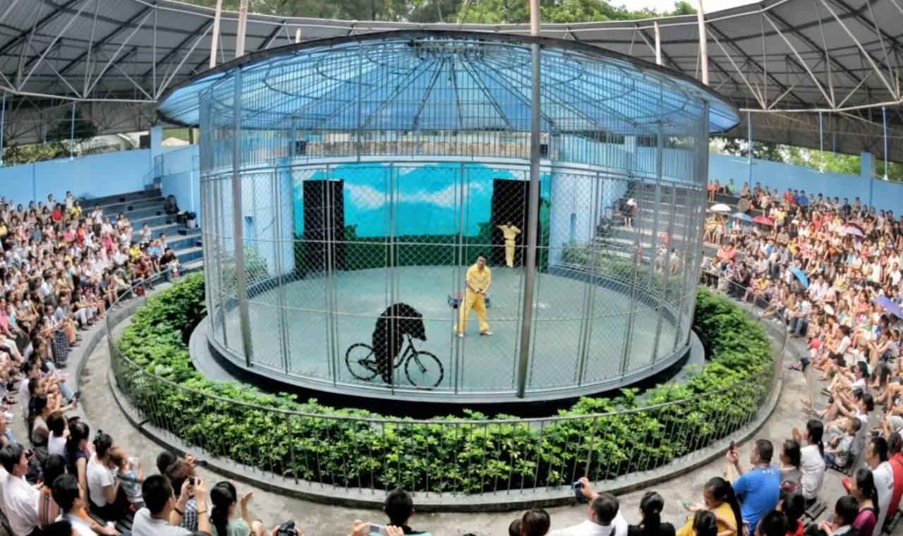 广州动物园结束24年马戏表演