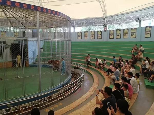 对此,广州动物园4日连发两份声明称,园方与马戏团是租赁关系,双方合同