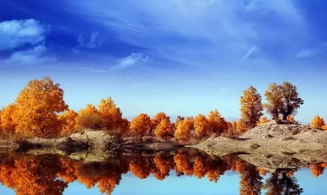 国内最美秋景即将来临,错过就要再等一年