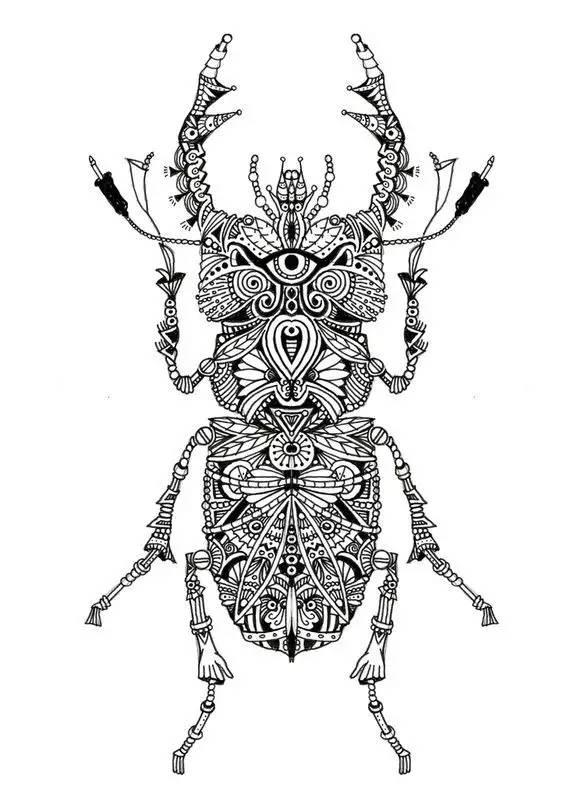 分先一些适合画在墙上的手绘资料 / · 动物手绘稿 · · 昆虫手绘