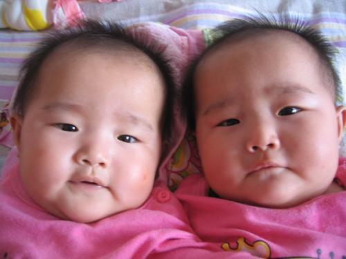 双胞胎表示很尴尬(图片来自中国早教网)