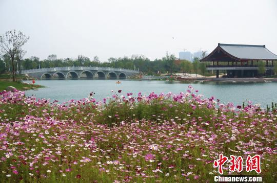 图为郑州园博园里的一景。 韩章云 摄