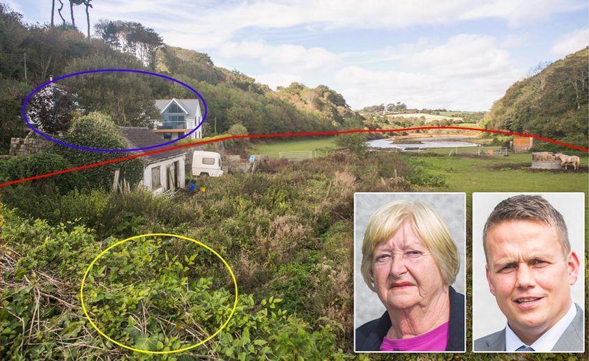 日本外来植物入侵导致英国一栋豪宅杂草丛生房价贬值