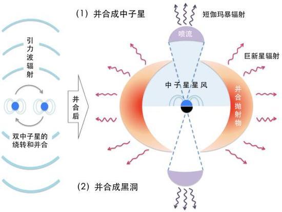 双中子星并合后发出短伽玛暴和巨新星辐射的示意图
