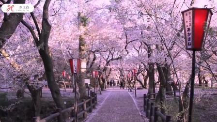 80后女孩日本创业,只身赚得三间独栋民宿