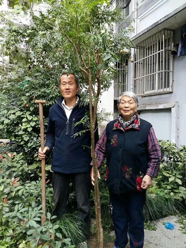 !杭州大伯骑车穿过一座城给她送去两棵香椿树