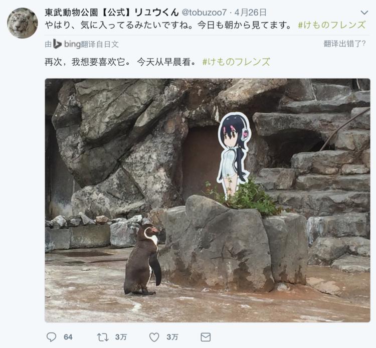 互联网  东武动物园的官方推特隔三差五就要发两张葡萄君看着hululu的