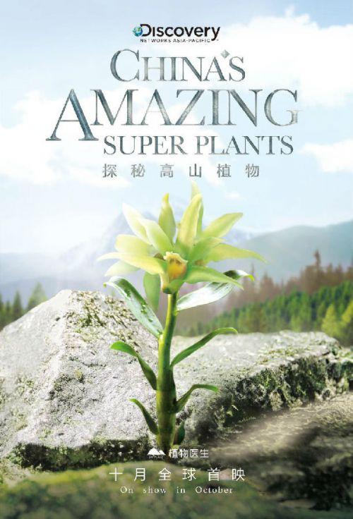 中国植物学家助力Discovery探索频道 开启高山植物