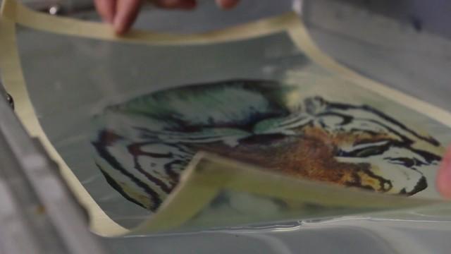计算水文印刷 3D打印色彩革命探索者