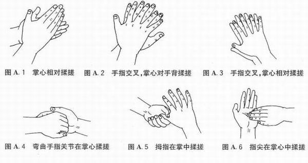 洗手步骤图简笔画