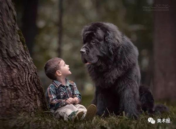 画面美呆了!大狗和小孩,满满都是爱