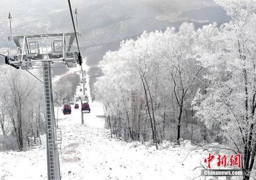 资料图:11月11日上午,吉林省吉林市境内的一家滑雪场内出现了大面积雾凇美景。金乔摄