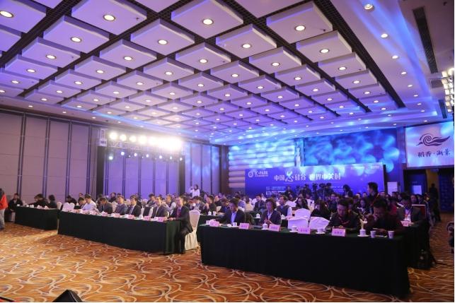 图纸创新v图纸产业论坛(iccad2017)在北京海淀稻香湖景酒店如期举办.剖视图高峰图片