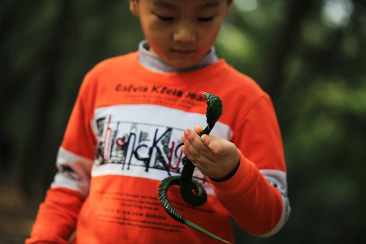 老人用棕树叶子编织小动物 蚂蚱青蛙和蛇备受欢迎