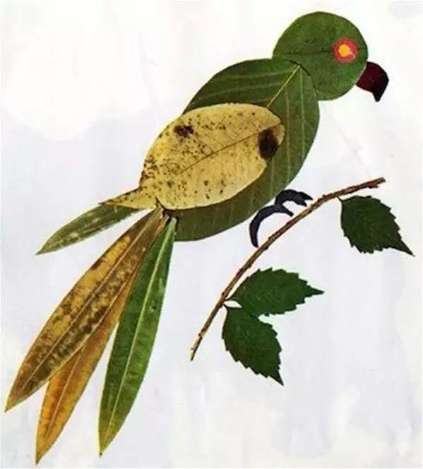 手工篇:各种动物的树叶拼贴画的做法图解!