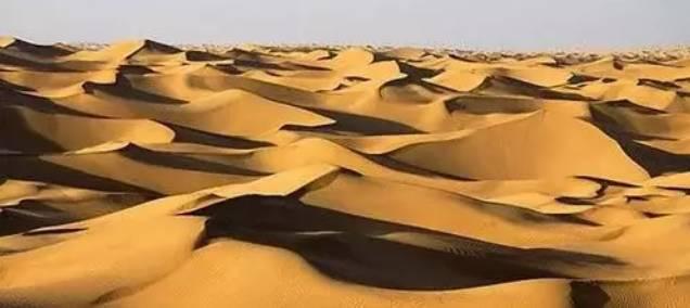 点沙成土 中国科学家成功实现了低成本、快速将沙漠变绿洲的奇迹