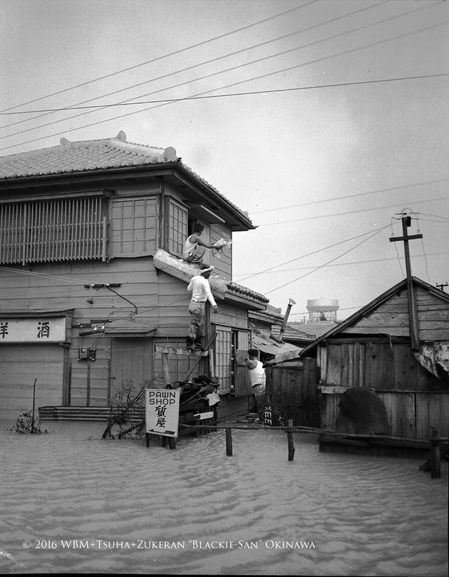 台风之后的冲绳惨象,只有一种人能笑得出来
