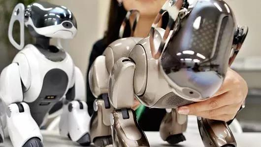 如果你养了一只可爱的机器宠物狗,你会对它产生感情么?